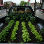 A Truck Farm Grows in Brooklyn