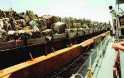 Mobro 4000 Garbage Barge