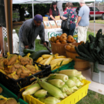 Top Ten Reasons to Buy From Local Growers